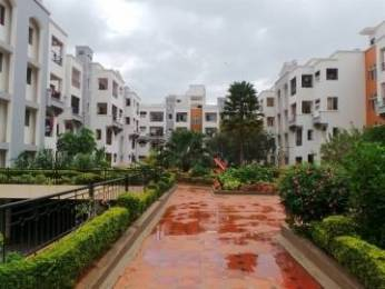 1300 sqft, 2 bhk Apartment in Builder Project Hebbal, Bangalore at Rs. 24000