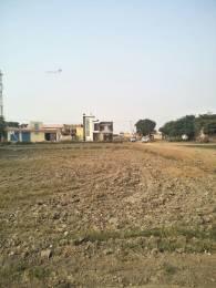 1017 sqft, Plot in Builder SHRI RADHE JI SOCIETY Alapur, Palwal at Rs. 11.1000 Lacs
