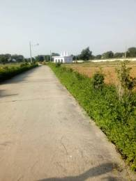 2475 sqft, Plot in Builder Project Yamuna Expressway, Greater Noida at Rs. 27.2000 Lacs