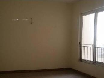 1710 sqft, 3 bhk Apartment in KLJ Greens Sector 77, Faridabad at Rs. 43.0000 Lacs