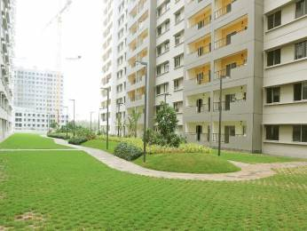 1007 sqft, 2 bhk Apartment in Sobha Rain Forest at Dream Acres Varthur, Bangalore at Rs. 23000