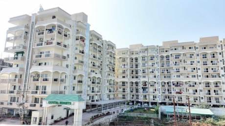 1951 sqft, 3 bhk Apartment in Builder Ready to move 3 bhk luxurious apartment in gms road dehradun GMS Road, Dehradun at Rs. 81.0000 Lacs
