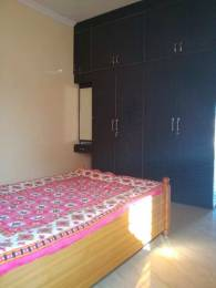 800 sqft, 2 bhk Apartment in Builder Project Chuna Bhatti, Bhopal at Rs. 10000