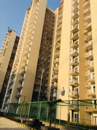 1035 sqft, 2 bhk Apartment in Builder Project Greater Noida West, Greater Noida at Rs. 31.0000 Lacs