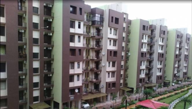 3060 sqft, 3 bhk Apartment in Builder maya Garden City Zirakpur punjab, Chandigarh at Rs. 68.8500 Lacs