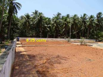5771 sqft, Plot in Builder Kemmannu Santhekatte, Mangalore at Rs. 46.3750 Lacs