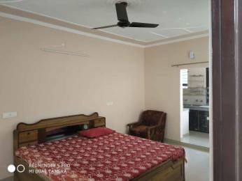 1000 sqft, 1 bhk IndependentHouse in Builder Project Sunny Enclave, Mohali at Rs. 6500