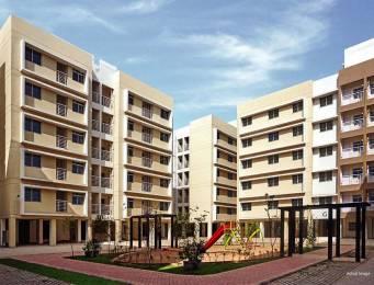 905 sqft, 2 bhk BuilderFloor in Builder Project Vaishnodevi, Ahmedabad at Rs. 32.5100 Lacs