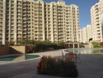 1175 sqft, 2 bhk Apartment in Ashiana Ashiana Umang Mahindra Sez, Jaipur at Rs. 8000