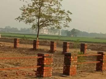450 sqft, 1 bhk Apartment in Builder Project Kharar Landran Rd, Mohali at Rs. 8.9000 Lacs