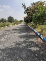 2421 sqft, Plot in Builder Ample Meadows Adibatla Mangalpally, Hyderabad at Rs. 43.0000 Lacs