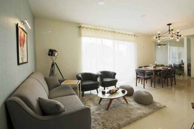 1310 sqft, 2 bhk Apartment in Anant Raj Maceo Sector 91, Gurgaon at Rs. 60.2600 Lacs