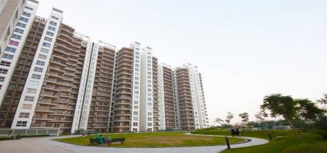 1200 sqft, 1 bhk Apartment in Spaze Privy Sector 72, Gurgaon at Rs. 15000