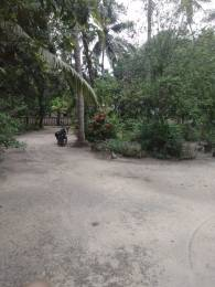 15246 sqft, Plot in Builder Project Evoor Muttom Road, Alappuzha at Rs. 78.7500 Lacs