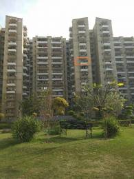 1441 sqft, 3 bhk Apartment in Stellar Jeevan Sector 1 Noida Extension, Greater Noida at Rs. 8500