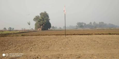 1000 sqft, Plot in Builder Tashi2 IIT BIHTA, Patna at Rs. 0.0100 Cr