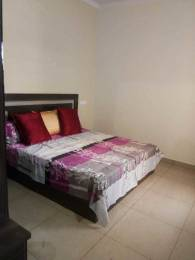 1100 sqft, 3 bhk Apartment in Shiwalik Palm City Sector 127 Mohali, Mohali at Rs. 25.9000 Lacs