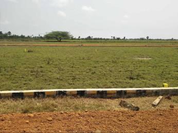 1620 sqft, Plot in Builder venkataswara green city Mini Bypass Road, Nellore at Rs. 11.2000 Lacs