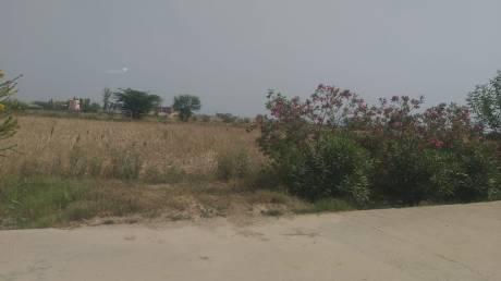 9450 sqft, Plot in Builder Project Ajeetgarh, Jaipur at Rs. 45.3950 Lacs