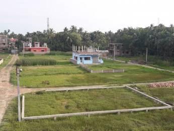 1440 sqft, Plot in Builder Project Baruipur Amtala Road, Kolkata at Rs. 4.8000 Lacs