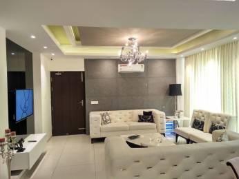 1385 sqft, 2 bhk Apartment in Maya Green Lotus Saksham Patiala Highway, Zirakpur at Rs. 52.5500 Lacs