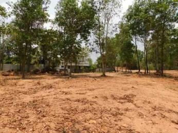87120 sqft, Plot in Builder Project Mannanthala, Trivandrum at Rs. 4.0000 Cr