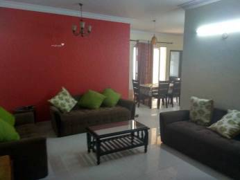 1565 sqft, 3 bhk Apartment in Majestic Residency BTM Layout, Bangalore at Rs. 50000
