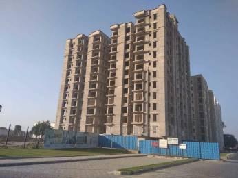 1400 sqft, 3 bhk Apartment in Builder Siddha Aangan Mayur Ajmer Road Jaipur Ajmer Road, Jaipur at Rs. 34.5100 Lacs