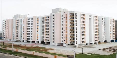 885 sqft, 2 bhk Apartment in Builder Siddha hans ajmer road mahindra sez Mahindra Sez, Jaipur at Rs. 18.5100 Lacs