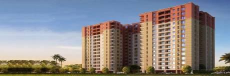 862 sqft, 2 bhk Apartment in Siddha Aangan Bagru, Jaipur at Rs. 19.5100 Lacs