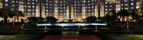 1450 sqft, 3 bhk Apartment in Shalimar Sheres Shalimar Mannat Faizabad Road, Lucknow at Rs. 50.0000 Lacs