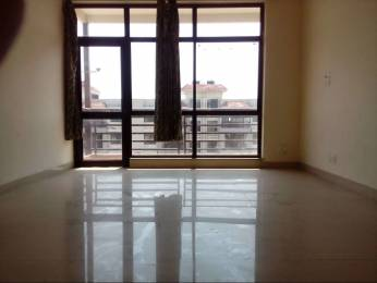 1605 sqft, 3 bhk BuilderFloor in Ansal Golf Links Sector 114 Mohali, Mohali at Rs. 39.5000 Lacs