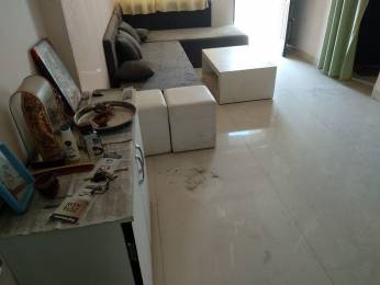 1300 sqft, 2 bhk Apartment in BCM Heights Vijay Nagar, Indore at Rs. 20000