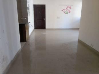 2400 sqft, 4 bhk Apartment in Vipul World Plots Sector 48, Gurgaon at Rs. 1.2000 Cr