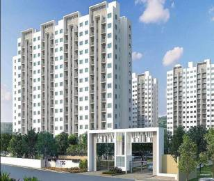 528 sqft, 1 bhk Apartment in TCG The Cliff Garden Hinjewadi, Pune at Rs. 34.6100 Lacs