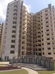 1300 sqft, 2 bhk Apartment in Avalon Rangoli Sector 24 Dharuhera, Dharuhera at Rs. 7500