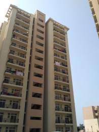1234 sqft, 2 bhk Apartment in Nimai Greens Sector 22 Bhiwadi, Bhiwadi at Rs. 28.5000 Lacs