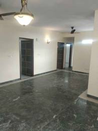 1750 sqft, 3 bhk Apartment in Builder Cghs palm court Sector 19 Dwarka, Delhi at Rs. 29500