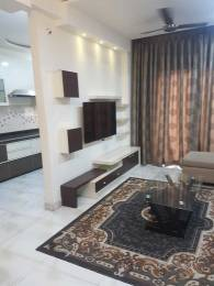 800 sqft, 2 bhk Apartment in Builder Project Pachpedi Naka, Raipur at Rs. 15000