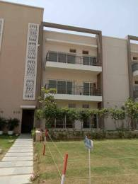 1460 sqft, 3 bhk BuilderFloor in Puri Amanvilas Plots Sector 89, Faridabad at Rs. 67.9500 Lacs