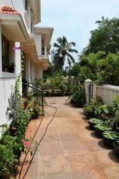 2583.336 sqft, 2 bhk Villa in Saldanha Bougain Villas Vagator, Goa at Rs. 1.4000 Cr