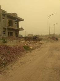 2250 sqft, Plot in Builder TDI City Sector 117 Mohali Sector 117 Mohali, Mohali at Rs. 80.0000 Lacs
