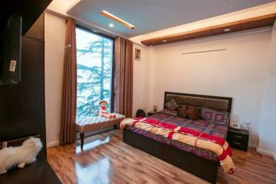 3220 sqft, 5 bhk Apartment in Builder Project Bharari, Shimla at Rs. 1.3500 Cr