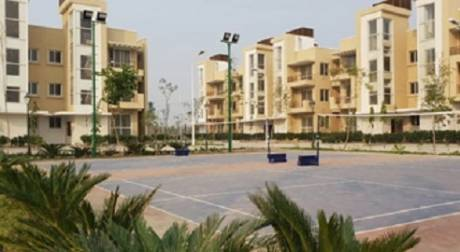 1710 sqft, 3 bhk BuilderFloor in BPTP Parklands Pride Sector 77, Faridabad at Rs. 49.6200 Lacs