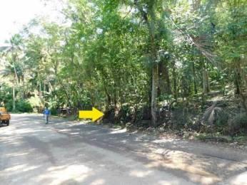 22212 sqft, Plot in Builder Project Kattakada Ottasekharamangalam Road, Trivandrum at Rs. 1.1475 Cr