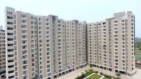 528 sqft, 1 bhk Apartment in Builder Project Dera Basi, Zirakpur at Rs. 17.9000 Lacs