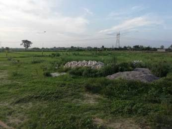 1800 sqft, Plot in Builder Project Sector 16, Greater Noida at Rs. 30.0000 Lacs
