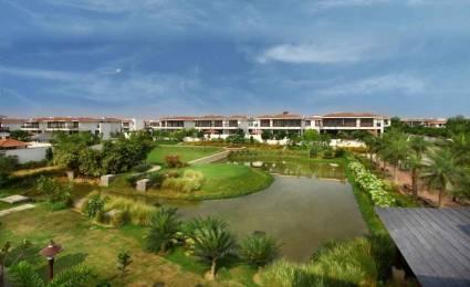 4750 sqft, 4 bhk Villa in Vipul Tatvam Villas Sector 48, Gurgaon at Rs. 5.1500 Cr