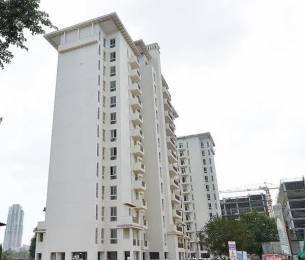 1395 sqft, 3 bhk Apartment in Emaar Emerald Estate Sector 65, Gurgaon at Rs. 97.0000 Lacs