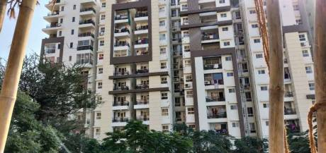 614 sqft, 1 bhk Apartment in Aashish Acacia Jagatpura, Jaipur at Rs. 29.5000 Lacs